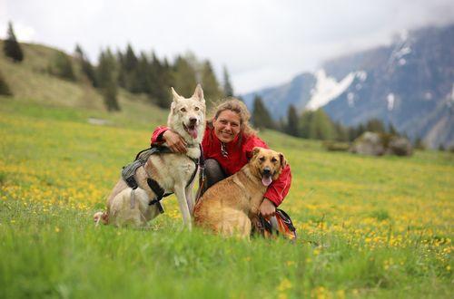 Hunde-Tagesbetreuung ©Tamara Antheunisse (motion4health)